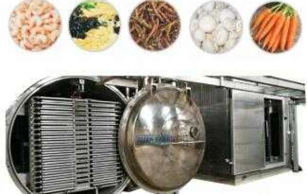 Advantages Of Using Freeze Dry Machine