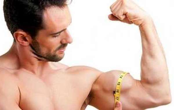 Just how to Build Muscle mass Like lightning