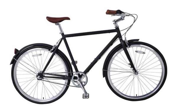 Protection equipment for classic city bicycles