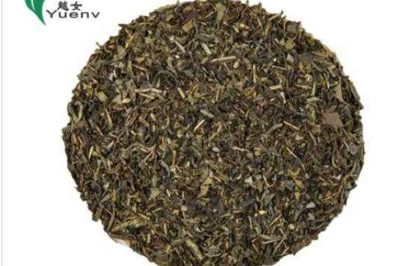 The Cultural Experience Of Green Tea 3505
