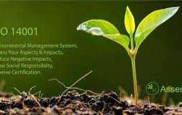Most Important Key Elements in a Successful Environmental Management System in Oman?