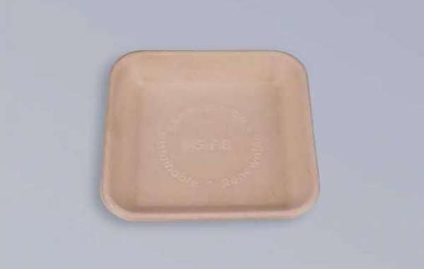 Briefly describe the product classification of bagasse tableware