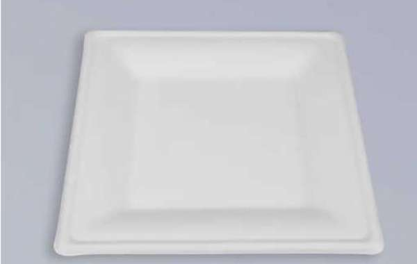 Global development of bagasse tableware products