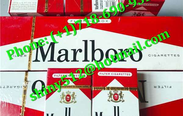 Cigarettes Hot Sale the circle is actually