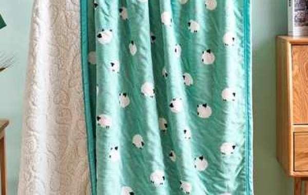 Variety of styles of PV plush blanket