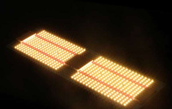 Top LED-groeilicht Samsung Quantum-bord met MeanWell-stuurprogramma | Kamerplanten